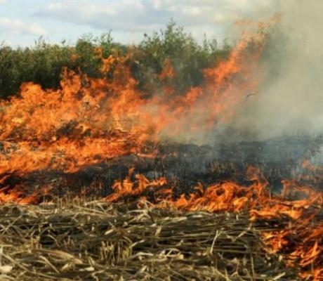 DOBOJ: Evidentirana četiri požara, izazivači će biti sankcionisani
